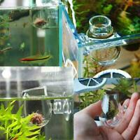 Elegant Aquarium/Fish/Tank Holder Aquatic Plant Acrylic Cup Pot Container G M5M6