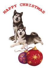 SIBERIAN HUSKY SLED DOG SINGLE DOG PRINT GREETING CHRISTMAS CARD