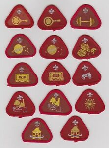 UK Cub Scout fourteen obsolete Proficiency badges, including varieties.