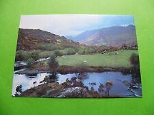 Cummeenduff River Near Killarney, County Kerry, Ireland - Irish Postcard