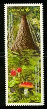 Canada #2462-2463i 2011 International Year of Forests Die Cut MNH