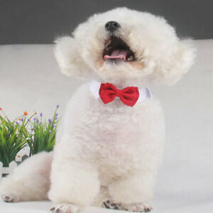 Cat Bow Tie Dog Bowknot Red Neck Collar Puppy Wedding Party Necktie Pet Necklace