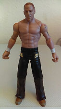 Mattel WWE World Championship WRESTLING Action Figure LOOSE Excellent Condition7
