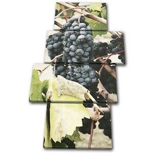 Grapes Garden Nature Food Kitchen MULTI CANVAS WALL ART Picture Print