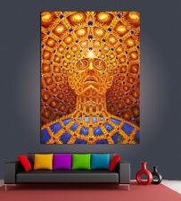 Alex Grey Tool Poster trippy psychadelic HQ Giant Print 70x100cm