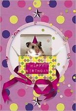 Carte de voeux joyeux anniversaire hamster dans boîte  10 cm x 7 cm