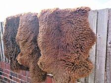 SHEEPSKIN RUG BROWN NATURAL 100% AMAIZING SOFT 100-110
