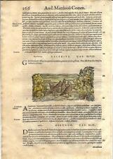 Stampa antica ERBARIO MATTIOLI MATTHIOLI UCCELLI ALLODOLA 1590 Old antique print