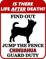 12x12 inch Chihuahua 2.8 Seconds Metal Sign//Plaque