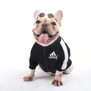 Clothes Winter Warm Pet Dogs Jacket Coat Puppy Chihuahua Clothing Hoodies XS-XL