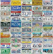 ALL 50 United States LICENSE PLATES Lot - Colorful USA Tags