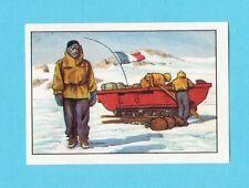 Antarctica Adelie Land Exploration Nestle Collector Sticker Card from Belgium B