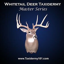 Learn Whitetail Deer Taxidermy DVD New. Filmed in HD 2015