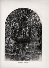Stampa antica BRUGES BRUGGE Fossato ninfee uccelli 1879 Old Print Ancien Gravure