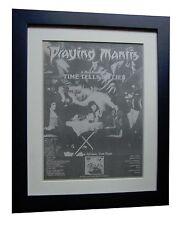 Praying Mantis+Time Tells Lies+Poster+Ad+Original 1981+Framed+Fast Global Ship