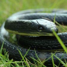 Schlange Gummi ca. 41 cm lang Super Gummischlange NEU