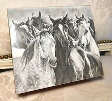 """New listing Rush Hour Wooden Box Wild Horse Grey Tone Photo Lid 8"""" x 7"""" Brass Hinges"""