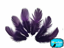 6 Pieces Large Purple Silver Pheasant Barred Plumage Feathers Fly Tying Jewelry