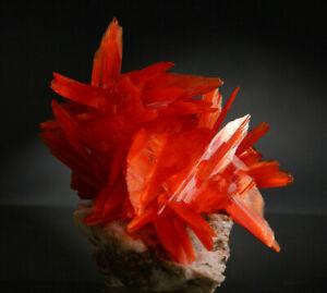 Arcanite crystals matrix, Apus orange cluster like crocoite, brookite, wulfenite