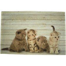 Mars&More Fußmatte Katze Britisch Kurzhaar 4 Baby Fußabtreter Fussmatte RARMKBK4