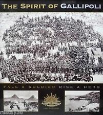 ANZACS THE SPIRIT OF GALLIPOLI LIMITED EDITION NEW PRINT PYRAMID ANZAC COVE