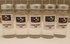 x5 Sterilized 10Ml Liquid Culture Extension Vials - Mycology/Mushroom Growing