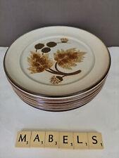 DENBY ~COTSWOLD~ tea plates x 6