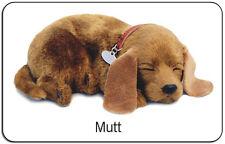 MUTT - Il cucciolo che respira - PERFECT PETZZZ