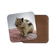Cheeky Chipmunk Coaster - Cute Rodent Rat Wild Animal Wildlife Cool Gift #15990