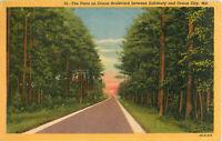 Postcard The Pines on Ocean Boulevard, Ocean City, MD