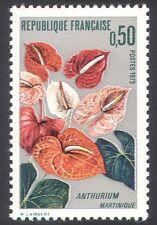 FRANCIA 1973 Anthurium/Fiori/Piante/NATURA/Orticoltura/aro gigante 1v (n40723)