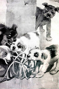 Cecil Aldin  - 5 PUPPIES CHEWING Destroying MUZZLE 1899 Antique DOG Print Matted