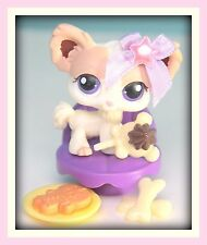 ❤️RARE Littlest Pet Shop LPS Tan / Cream Chihuahua #438 Accessories DOG LOT❤️
