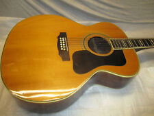 70's Takamine Jumbo 12 String -- only for d-B-E-a Windows Media Player