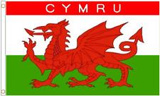 Wales Cymru Polyester Flag - Choice of Sizes