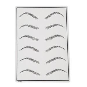 Microblading Eyebrow Practice Skin Tattoo Training Permanent Makeup Supplies