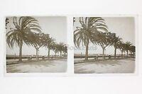 Cannes Placca Lente Stereo Vintage Positivo 6x13cm