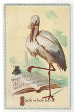 Stork Baby Birth Announcement 1913 postcard