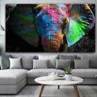 Colorful African Elephant Graffiti Art Canvas Paintings Wall Arts Livingroom Art