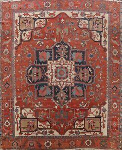 Pre-1900 Vegetable Dye Heriz Serapi Area Rug Hand-knotted Oriental 11x11 Square