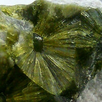Green Wavellite Crystals Specimen Baja California Mexico 5.5cm 73g Unpolished