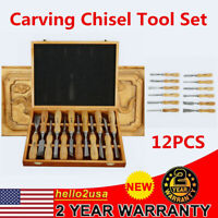 12 pcs High Quality Wood Carving Hand Chisel Tool Set Woodworking Gouges Steel