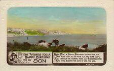 1920s or 30s postcard ! happy birthday son ! real photo coastal scene !