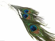 "New Long Peacock Feather Earrings Shoulder Dusters 10"" Long Hooks Over Ear Cuff"
