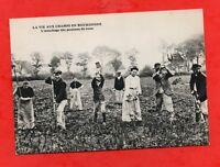La vie aux champs en Bourgogne - L'arrachage des pommes de terre   (J3424)