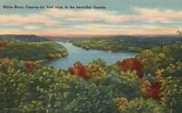 White River Famous For Float Trips In The Beautiful Ozarks Missouri MO Postcard