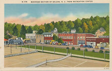 Saluda NC * Business Section from Rec Center ca. 1930s * Henderson Polk Co.
