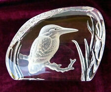 Vtg Kookaburra Bird Frosted Etched 3D Clear Glass Paperweight Presser Collectibl
