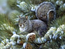 Oil Painting Print Picture Animals Squirrel looking for nuts on canvas L013