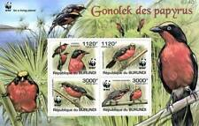 WWF BIRDS - PAPYRUS GONOLEK Swamp Bird MNH Stamp Sheet #1 of 5 (2011 Burundi)